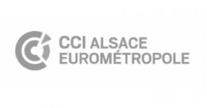Logo CCI Alsace Eurométropole