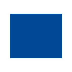Logo olympiades métiers (World Skills France)